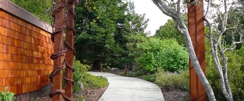 Redwood Deck Amp Shingle Siding Cal Preserving